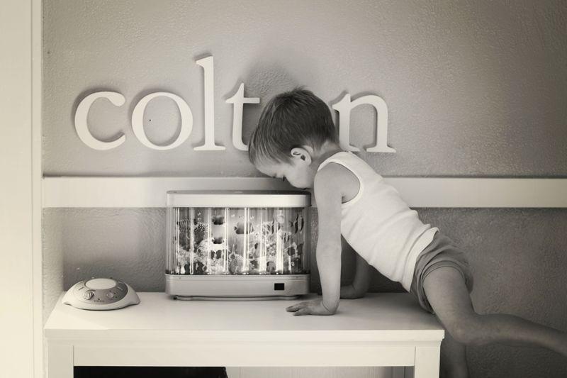 Colton1